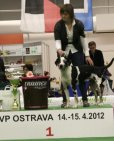 vystava-nvp-ostrava-2012-5