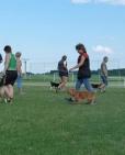 cvicak-zajecice-2012-07-8