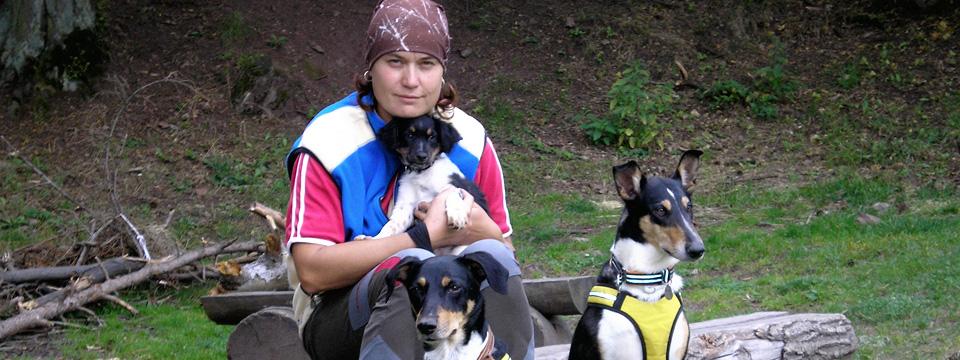 Český strakatý pes a kolie krátkosrstá